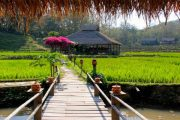 The best of the Mekong