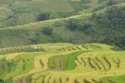 Highland of the North Vietnam