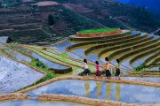 Sapa mountain retreat