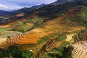 Stunning Northwestern Vietnam