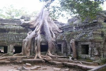 Angkor in depth tour